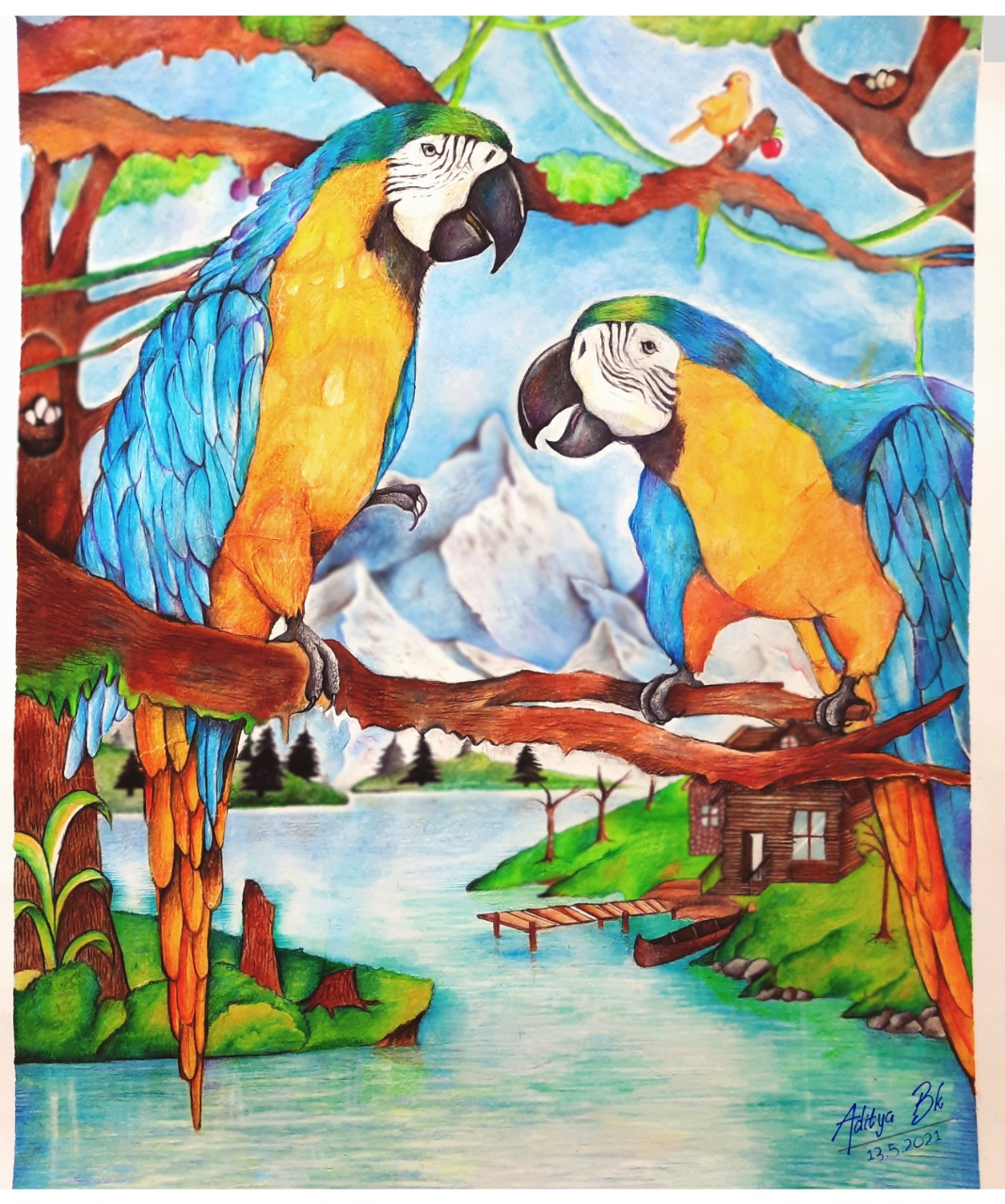 Painting in a parrot
